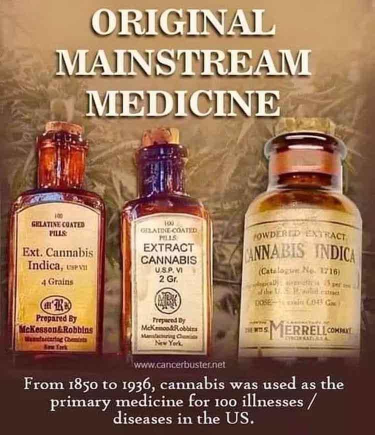 cannabis_med.jpg