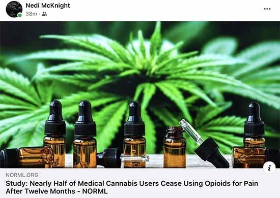 cannabis_study